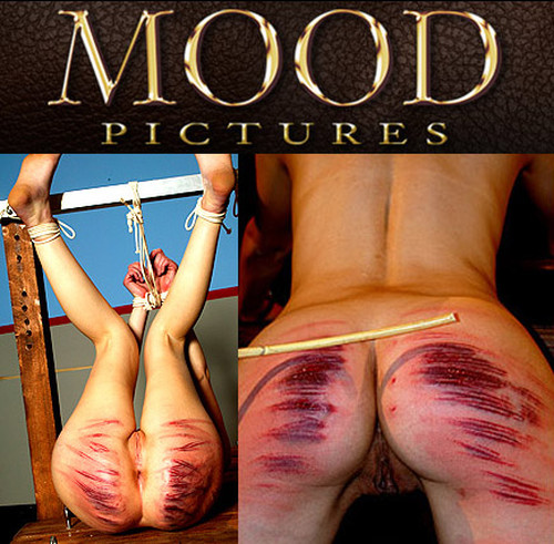 Mood Pictures BDSM SiteRip SITERIPS