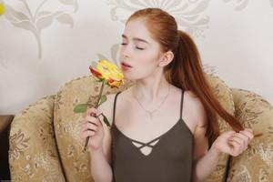 Jia Lissa - Yellow Rose  g6rtrboz5g.jpg
