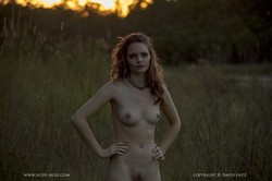 Evelyn-Amazing-Sunset--o6sukl72a3.jpg