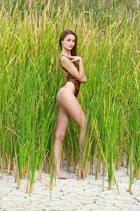 Elle-Hiding-In-The-Grass--66ta53r7ys.jpg