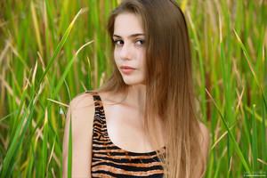 Elle-Hiding-In-The-Grass--x6ta54iboi.jpg