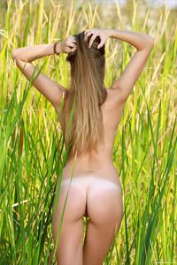 Elle-Hiding-In-The-Grass--c6ta5670ng.jpg