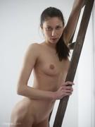 Eva Ladder-l6nulkhokx.jpg