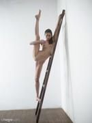 Eva Ladder-j6nulk217h.jpg